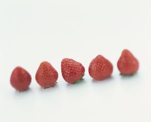5粒のいちごの写真素材 [FYI03861633]