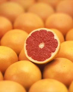 ルビーグレープフルーツの集合と断面の写真素材 [FYI03861737]