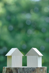新緑と積み木の写真素材 [FYI03862038]