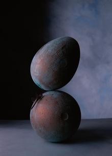 2個の球体とトンボの写真素材 [FYI03862509]