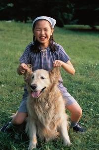 犬と遊ぶ女の子の写真素材 [FYI03863245]