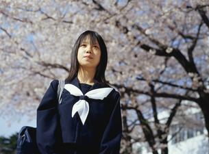 サクラの木と日本人女子学生の写真素材 [FYI03863603]