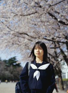 サクラの木と日本人女子学生の写真素材 [FYI03863605]