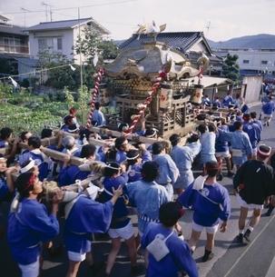 徳守寺の祭りで日本神輿を担ぐ人たち 津山 岡山県の写真素材 [FYI03864118]