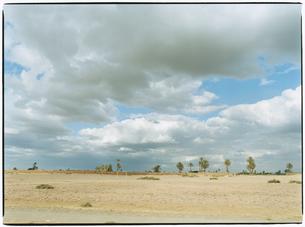野原の風景と雲と空 マラケッシュ モロッコの写真素材 [FYI03867701]