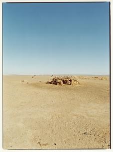 砂漠に建つ小屋   サハラ メルズーガ モロッコの写真素材 [FYI03867722]