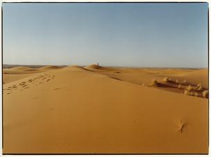サハラ砂漠 メルズーガ モロッコの写真素材 [FYI03867731]