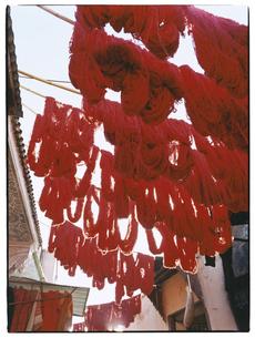 染色された毛糸   マラケッシュ モロッコの写真素材 [FYI03867735]