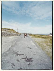 田舎道を走る馬車 イニシューマン島 アラン諸島 アイルランドの写真素材 [FYI03867770]