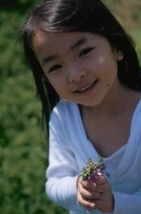 野花を持った女の子の写真素材 [FYI03868217]
