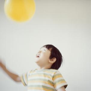 黄色い風船で遊ぶ日本人の男の子の写真素材 [FYI03868538]