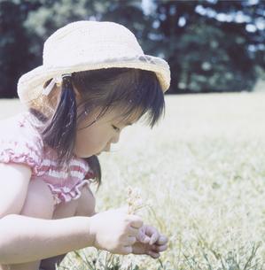 草花を積む日本人の女の子の写真素材 [FYI03868554]