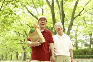 買い物袋を持って並木道を歩くシニア夫婦の写真素材 [FYI03869157]