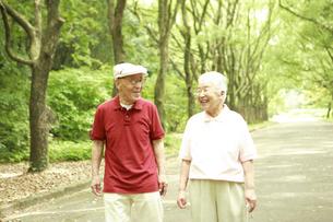 並木道を散歩するシニア夫婦の写真素材 [FYI03869165]