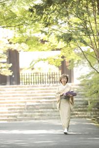 風呂敷包みを持つ着物姿のシニア女性の写真素材 [FYI03869175]