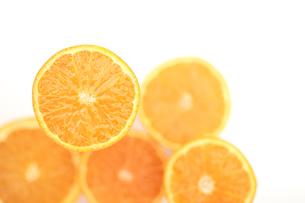 オレンジの写真素材 [FYI03869234]