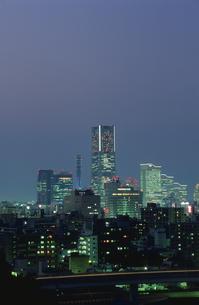 唐沢公園から見たみなとみらいの夜景の写真素材 [FYI03869959]