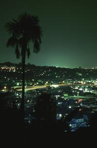 石垣山一夜城付近から見た夜景の写真素材 [FYI03869968]
