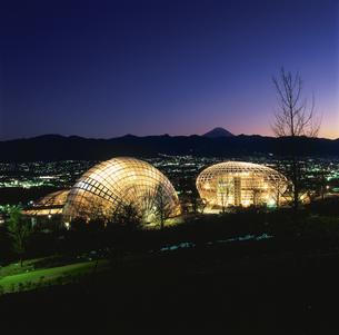 公園と富士山と甲府盆地の夜景の写真素材 [FYI03870018]