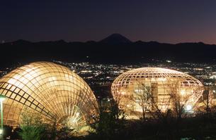 公園と富士山と甲府盆地の夜景の写真素材 [FYI03870021]