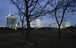 幕張海浜公園とビル群の夜景の写真素材 [FYI03870147]