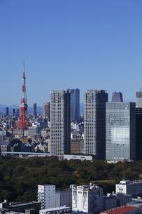 勝どきより東京タワーと浜離宮と汐留を望むの写真素材 [FYI03871012]