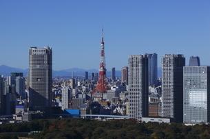 勝どきより東京タワーを望むの写真素材 [FYI03871038]