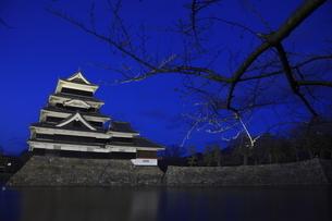 松本城のライトアップの写真素材 [FYI03871192]