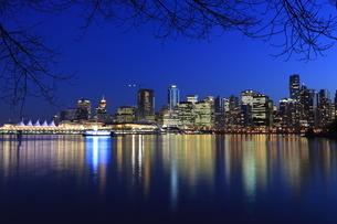 スタンレーパークより望むウォータフロントのビル群の夜景の写真素材 [FYI03871235]