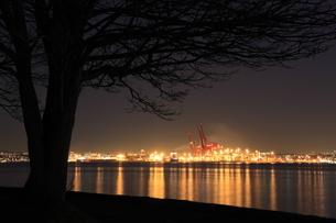 スタンレーパークより望むウォータフロントの夜景の写真素材 [FYI03871236]
