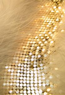 アクセサリーとファー(ゴールド)の写真素材 [FYI03871829]