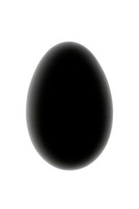 ガチョウの卵の写真素材 [FYI03871832]