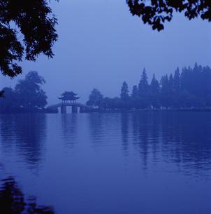 西湖 曲院風荷の写真素材 [FYI03871975]