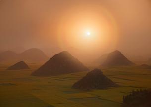 羅平 菜の花畑の日の出の写真素材 [FYI03872040]