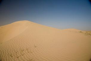 ドバイの砂漠の写真素材 [FYI03872068]