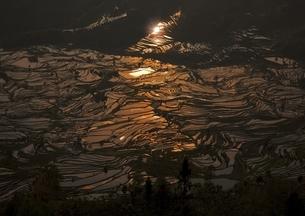 元陽の棚田の写真素材 [FYI03872072]