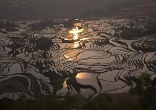 元陽の棚田を照らす朝日の写真素材 [FYI03872073]