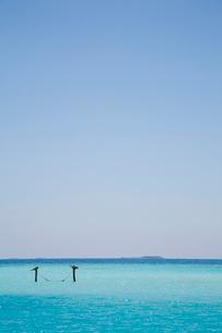 遠浅のビーチに浮かぶハンモックの写真素材 [FYI03872151]