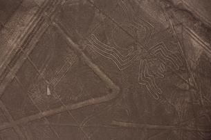 幾何学模様とクモの地上絵の写真素材 [FYI03872175]