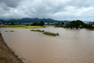 台風で増水した桂川の写真素材 [FYI03873091]