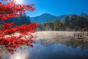 紅葉の金鱗湖の写真素材 [FYI03876030]