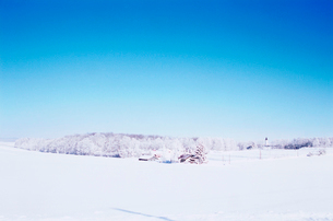 雪原の写真素材 [FYI03876219]
