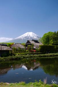 忍野の湧水群と富士山の写真素材 [FYI03876311]