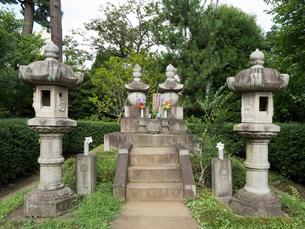 勝海舟夫妻の墓の写真素材 [FYI03876413]