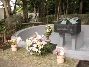 上野動物園の動物慰霊碑の写真素材 [FYI03876422]