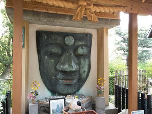 上野大仏の写真素材 [FYI03876449]