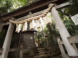 東京都 江古田の富士塚の写真素材 [FYI03876478]