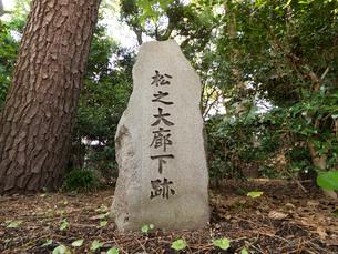 皇居東御苑 松之大廊下跡の写真素材 [FYI03876642]