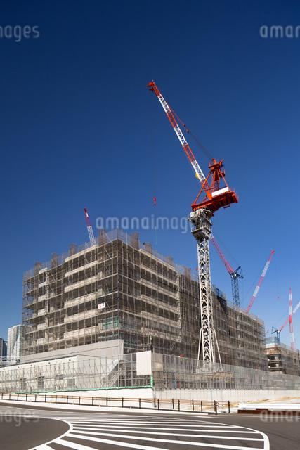 オリンピック選手村の建設が進む晴海埠頭の写真素材 [FYI03876707]