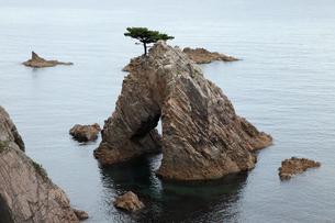 千貫松島 -花崗岩に形成された天然橋-の写真素材 [FYI03876994]